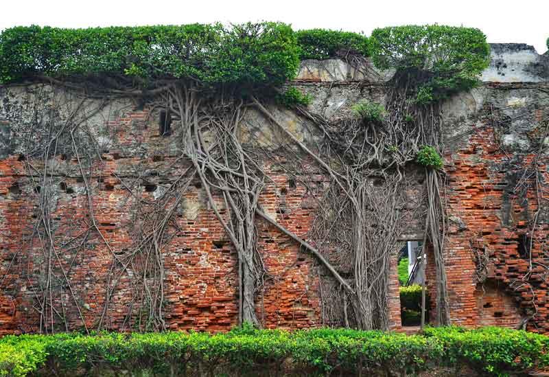 ゼーランジャ城の城壁(2014)